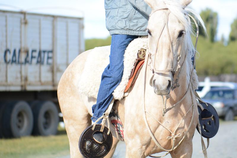Calafate_Rodeo-DSC_8669