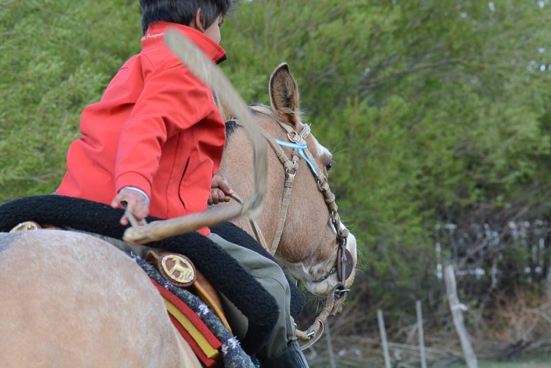 Calafate_Rodeo-DSC_8739